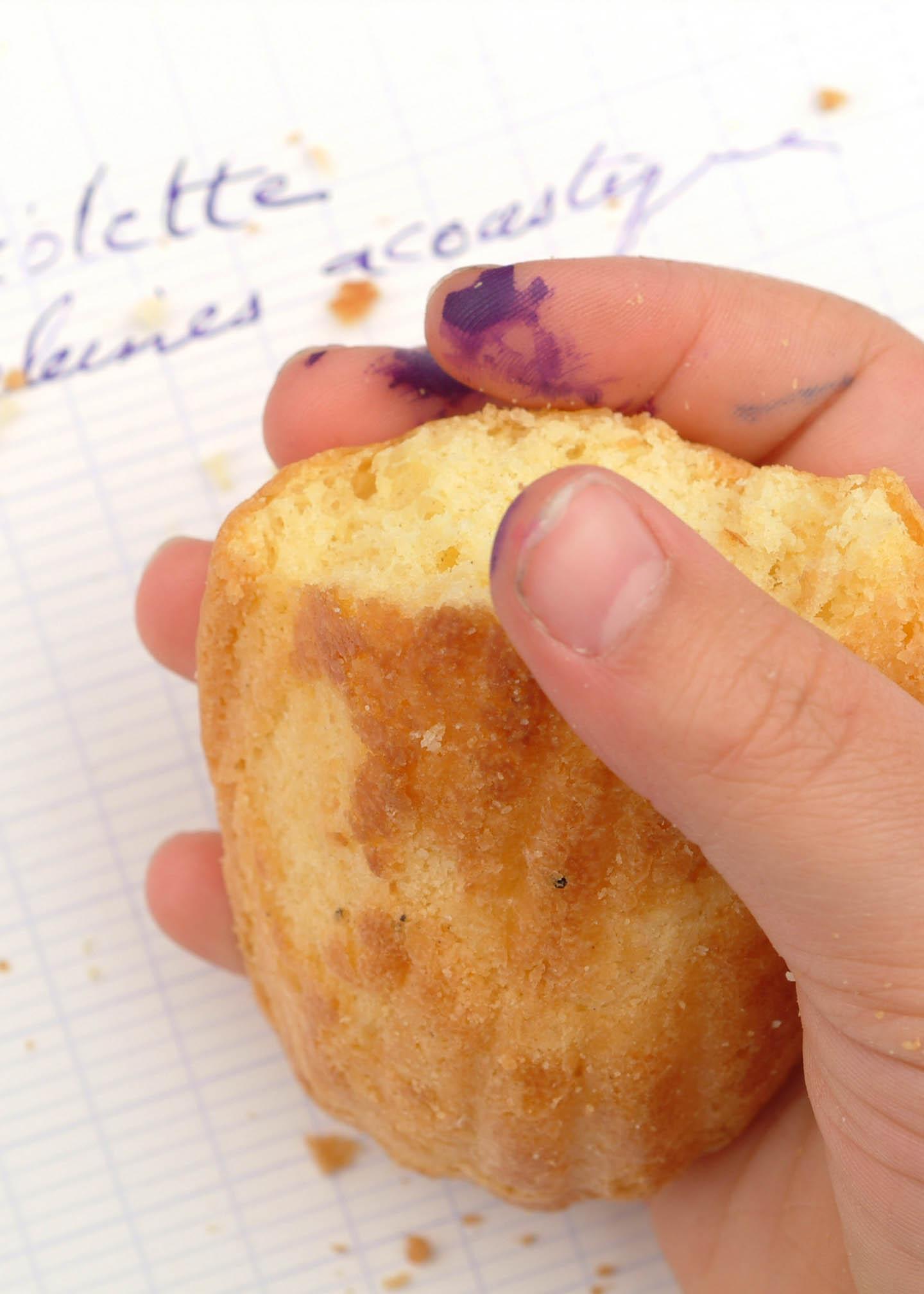 Etude violette aux madeleines acoustique